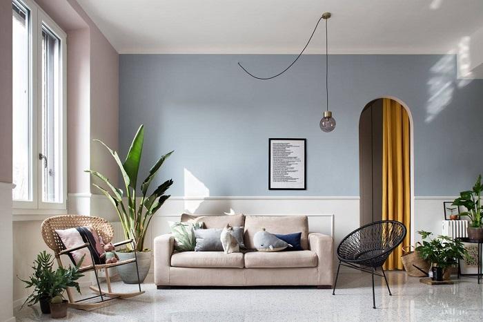 Cây xanh trang trí phòng khách