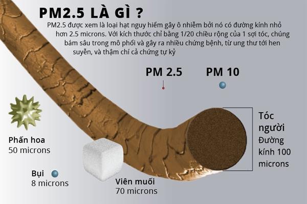 bụi PM2.5